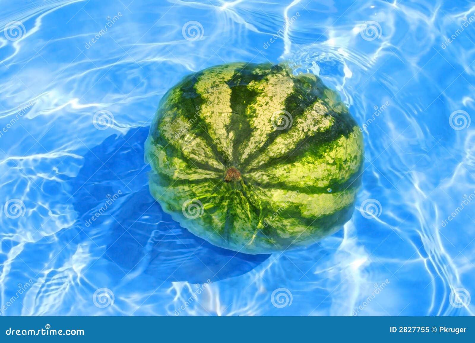 Melancia fresca na água