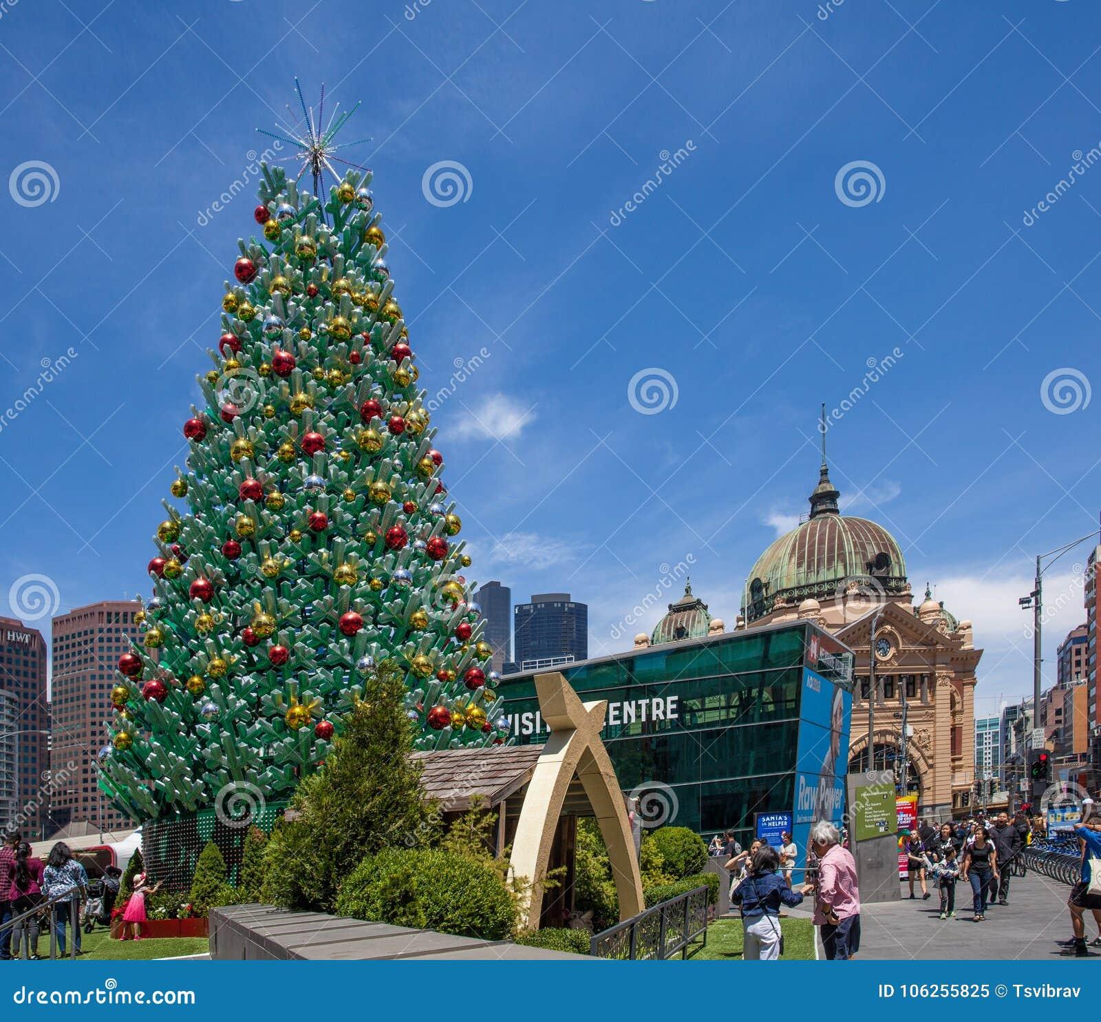 Christmas Trees Melbourne: December 16, 2017: Huge Beautiful