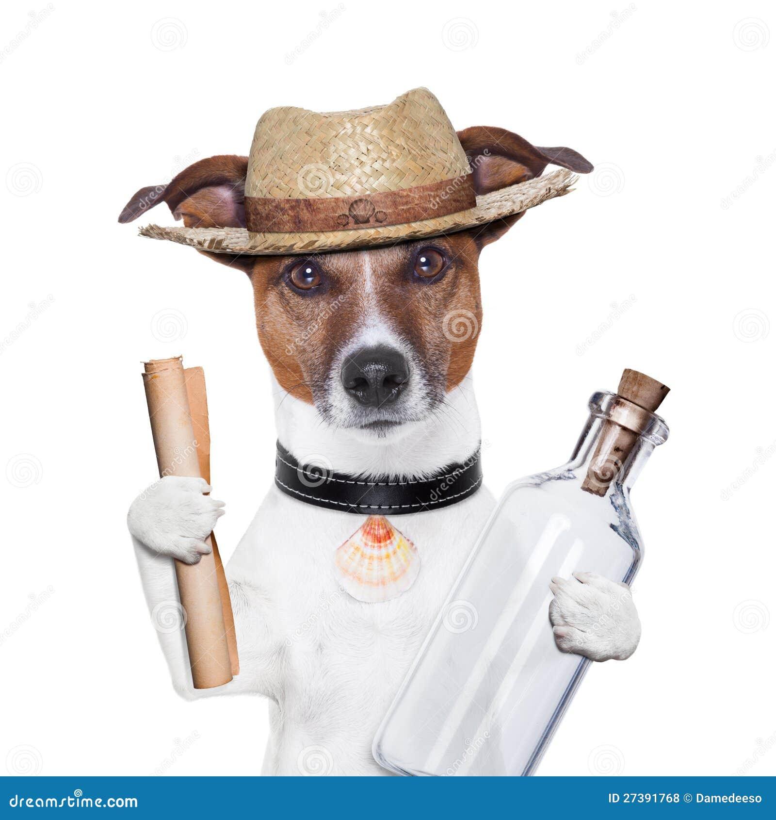 Meldung in einem Flaschenhund