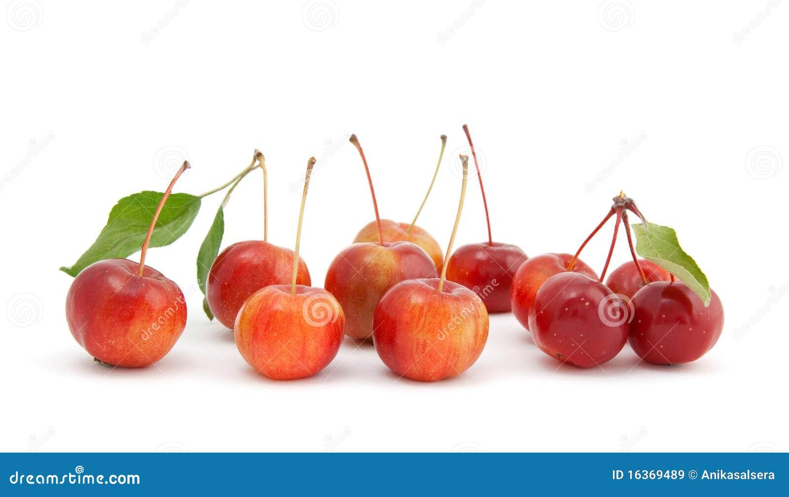 Mele di ciliegia cinesi su priorit bassa bianca immagini - Immagini stampabili di mele ...