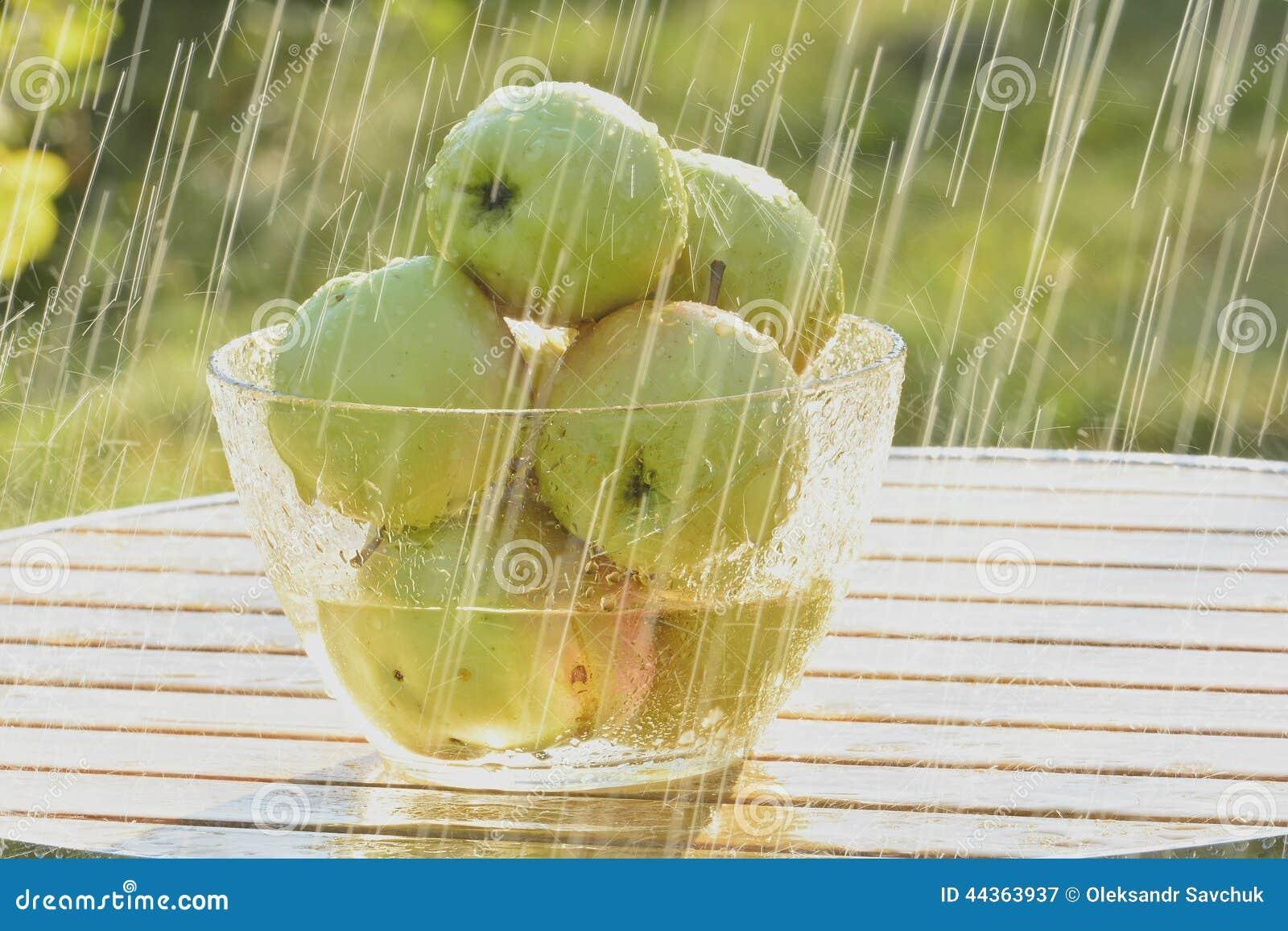 Mele e pioggia verdi di estate