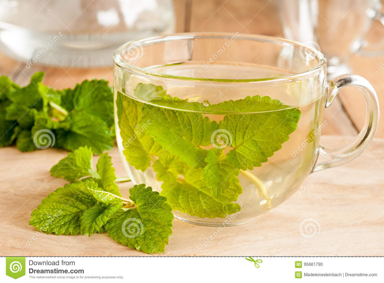 Is it possible to drink melissa tea during pregnancy 44