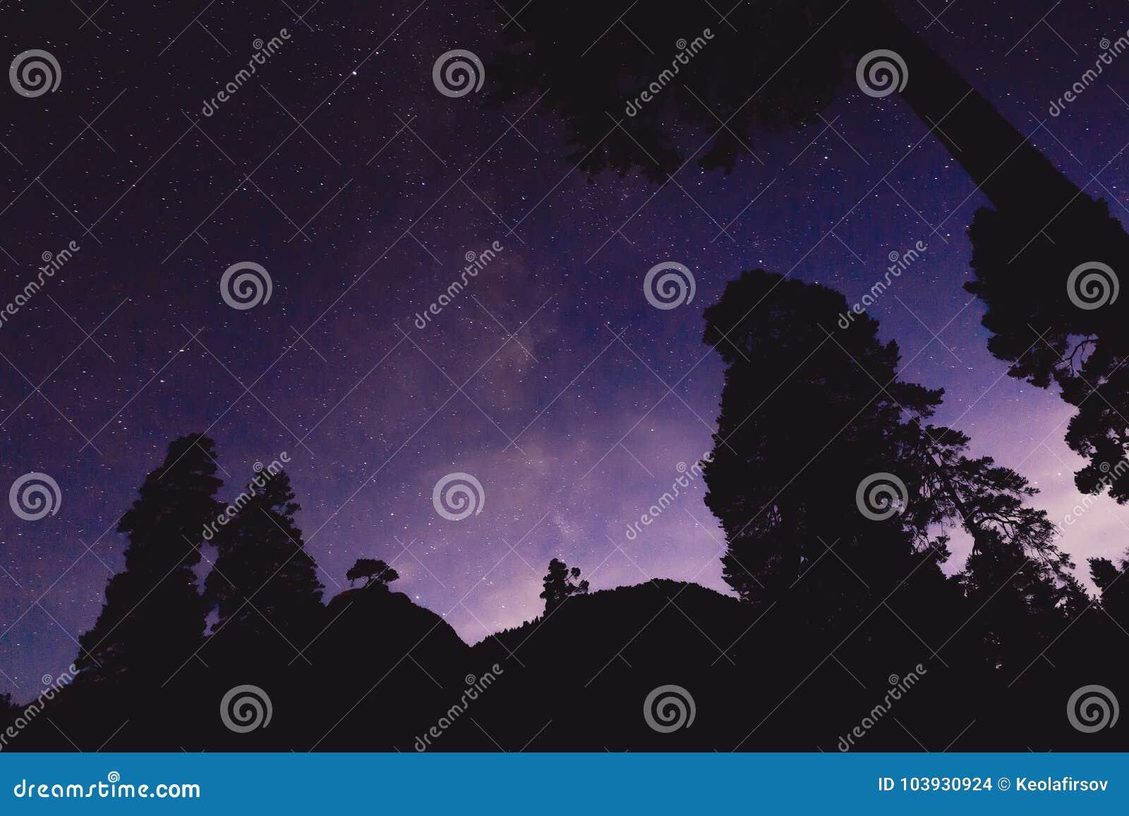 Melkweg en sommige bomen in de bergen Het landschap van de nacht