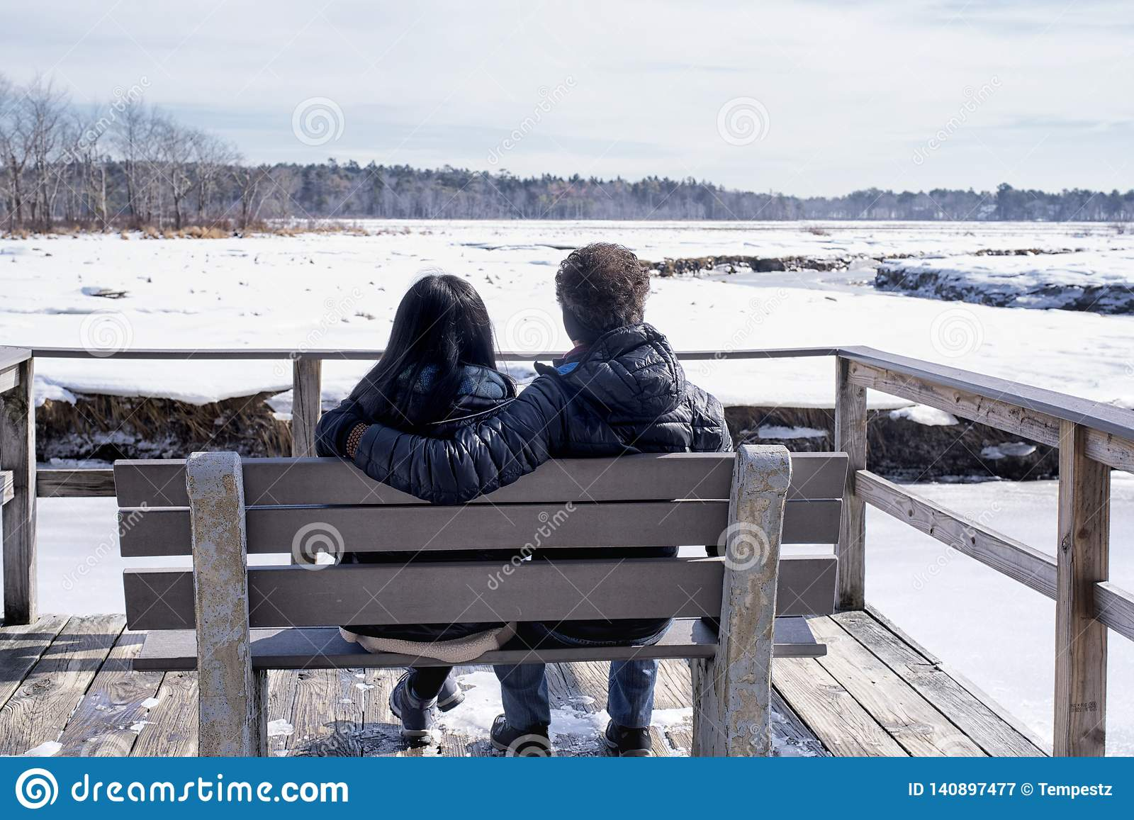Mellan skilda raser par i Maine vinterlandskap