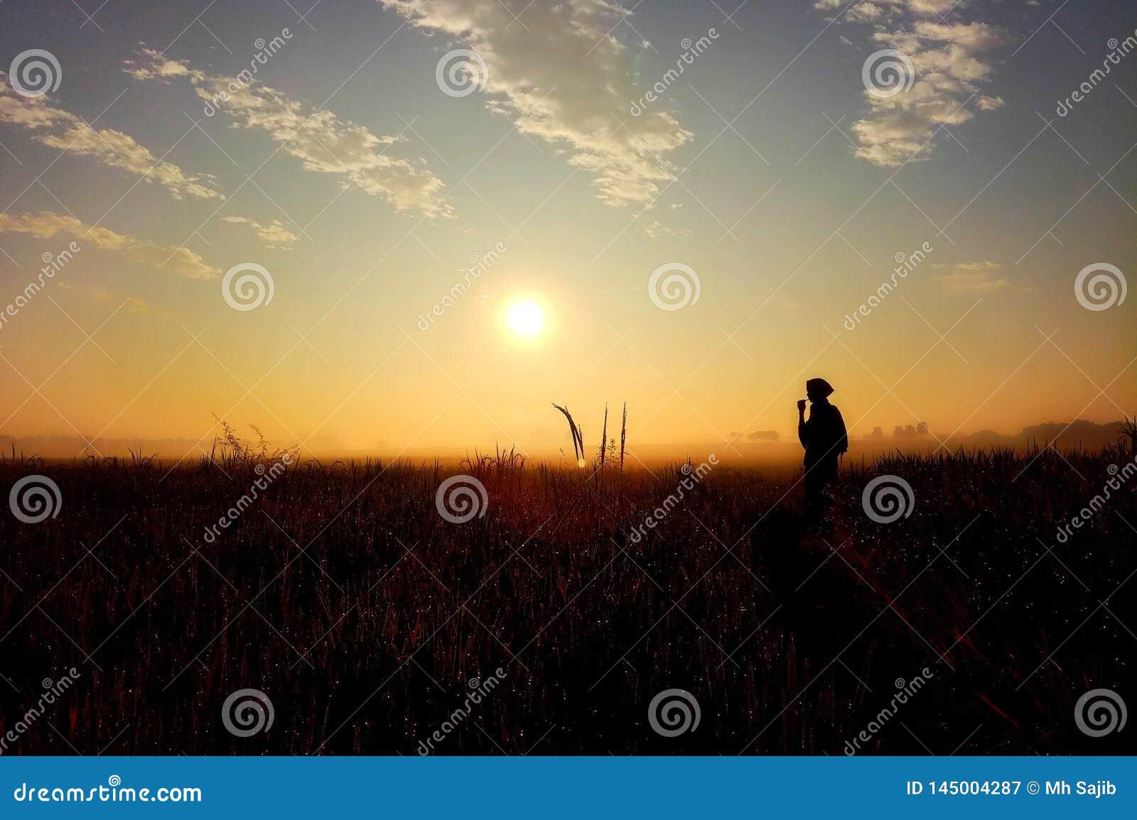 Melodía de la salida del sol