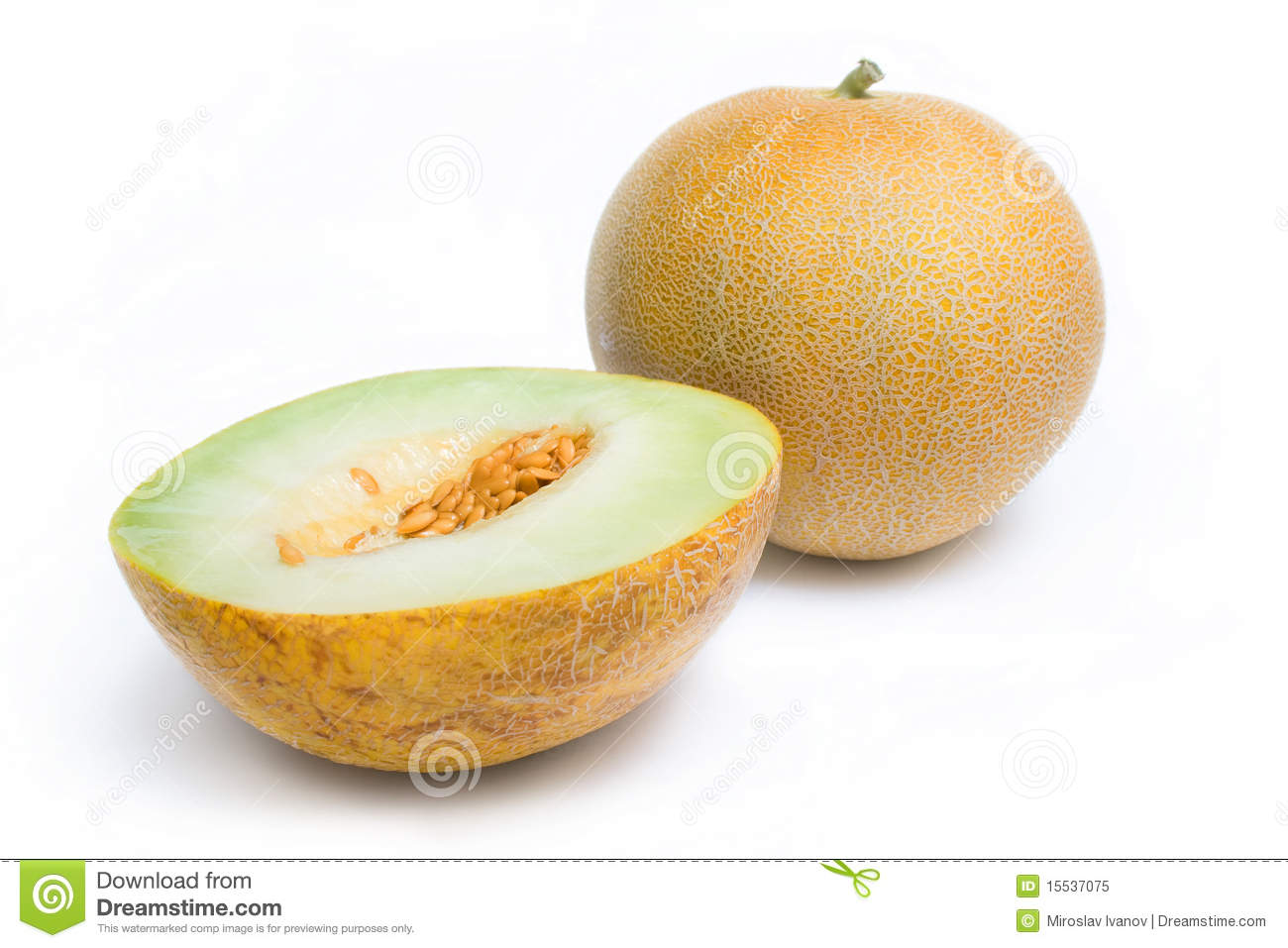 Honeydew melon is an ideal addition to any garden. It is important to understand when it is ripe and how to recognize the signs, so you can pick it when it is most flavorful. You need to use four senses to determine whether a melon is ripe, over-ripe or under-ripe.