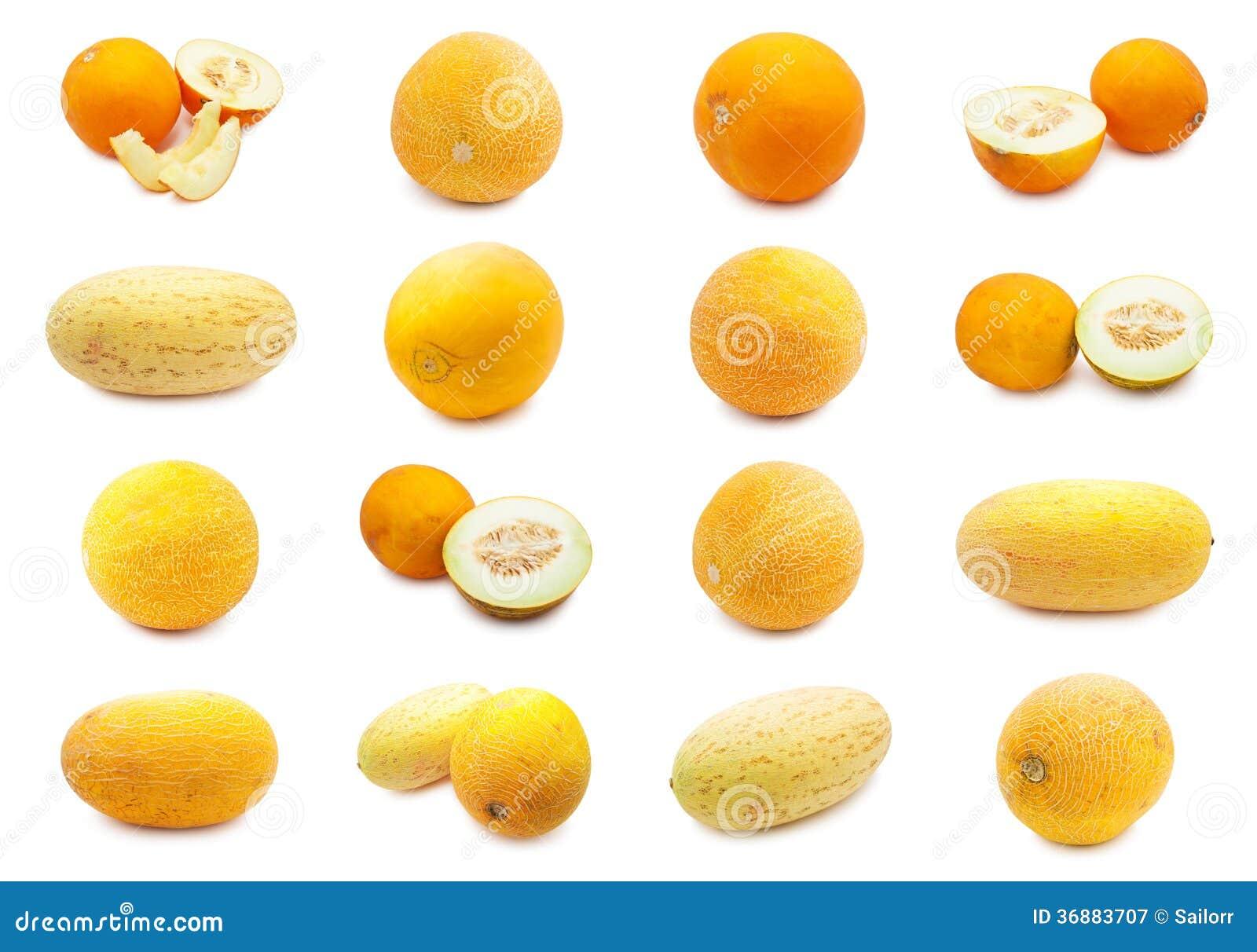Download Melone immagine stock. Immagine di dolce, cantalupo, melone - 36883707