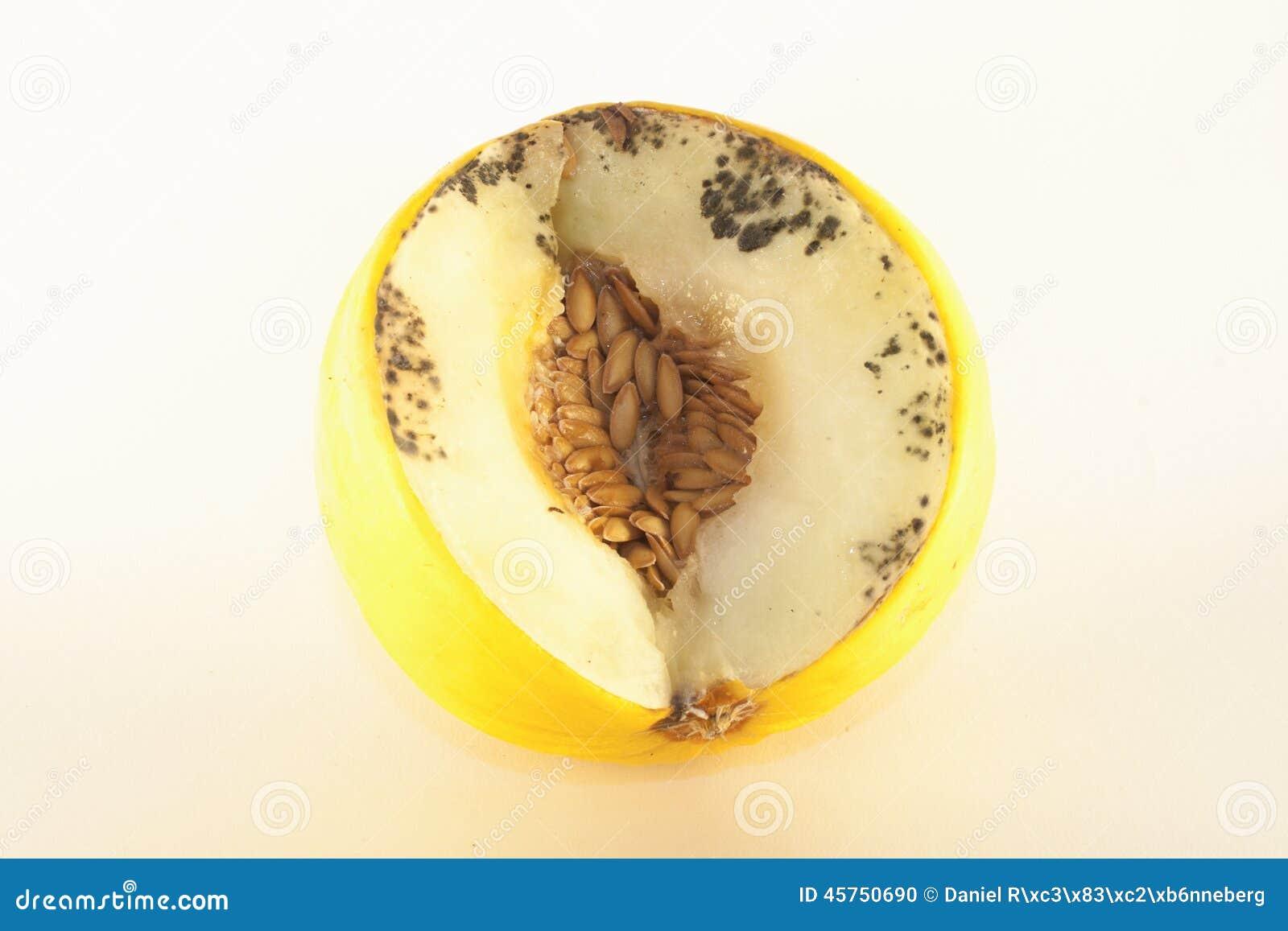 Melone marcio isolato