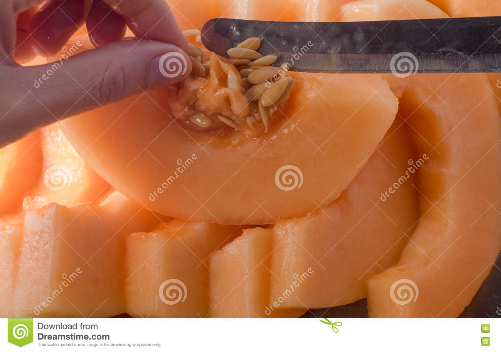 Melonenscheibe Fruchtscheibe essfertig