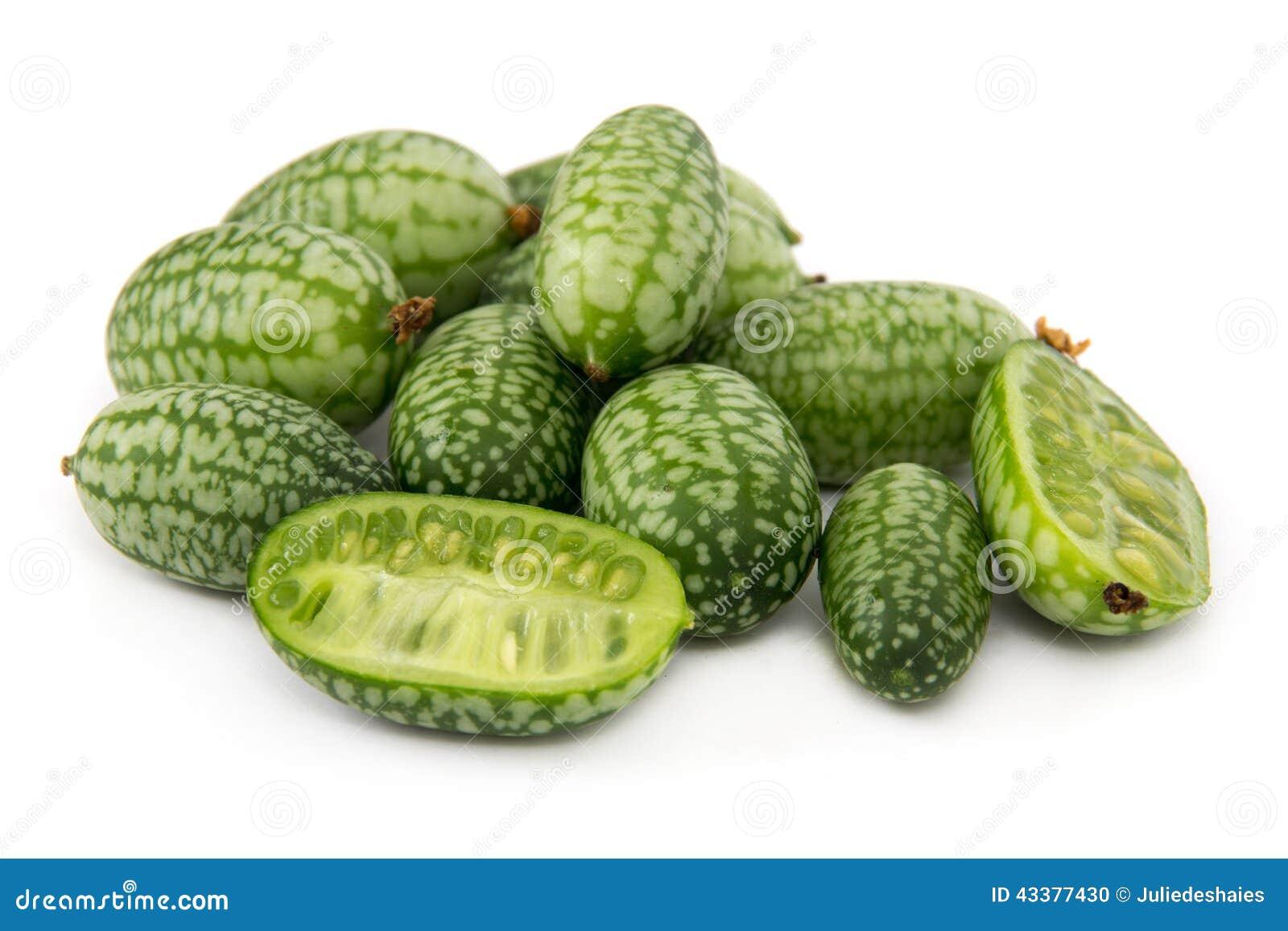 Scabra aka cucamelon or mousemelon stock photo image 43377430