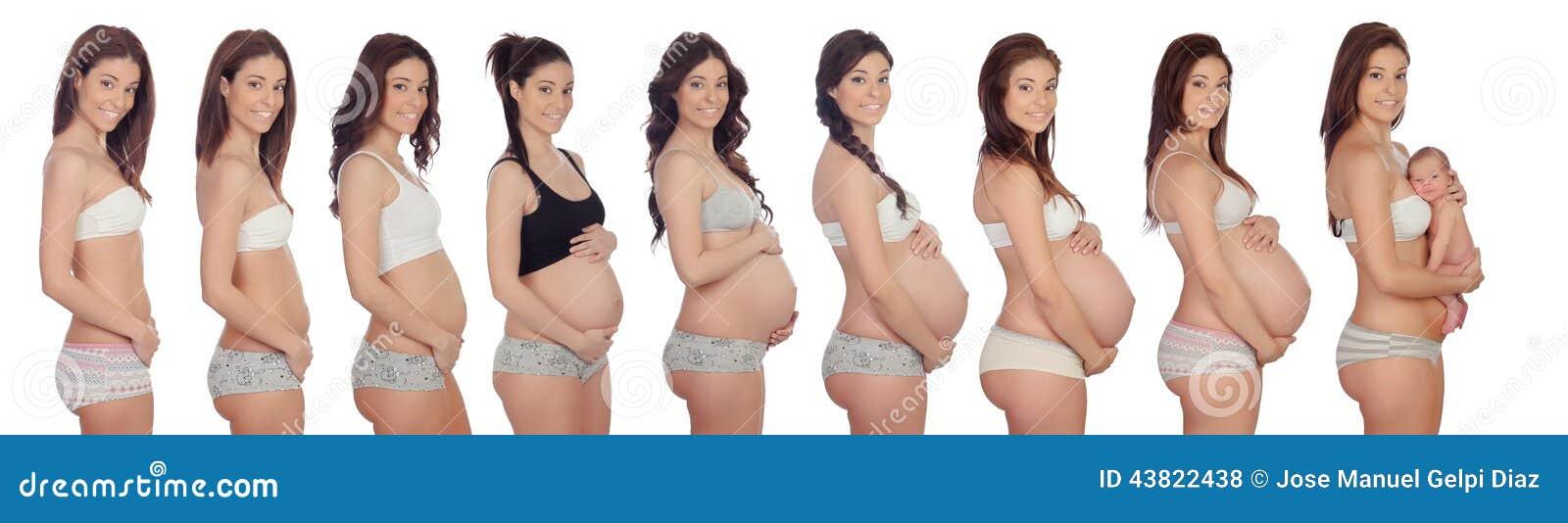 Как выглядит живот беременной