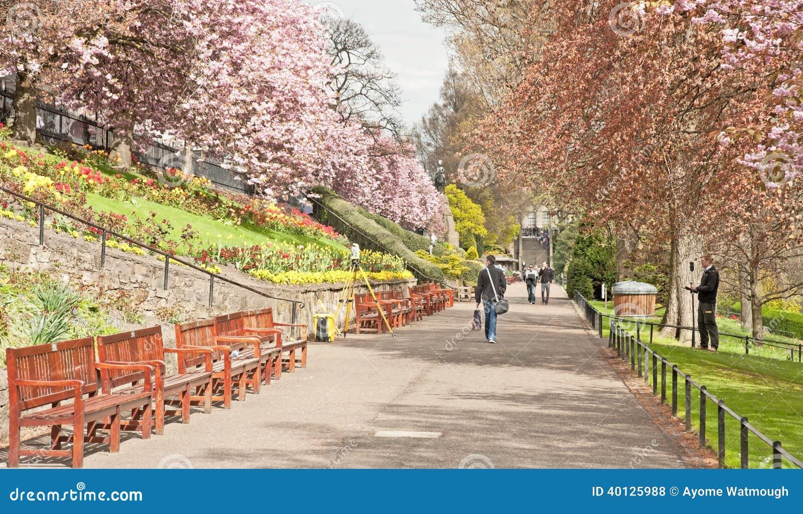 In princes street gardens edinburgh in spring time mr no pr no 2 395 2