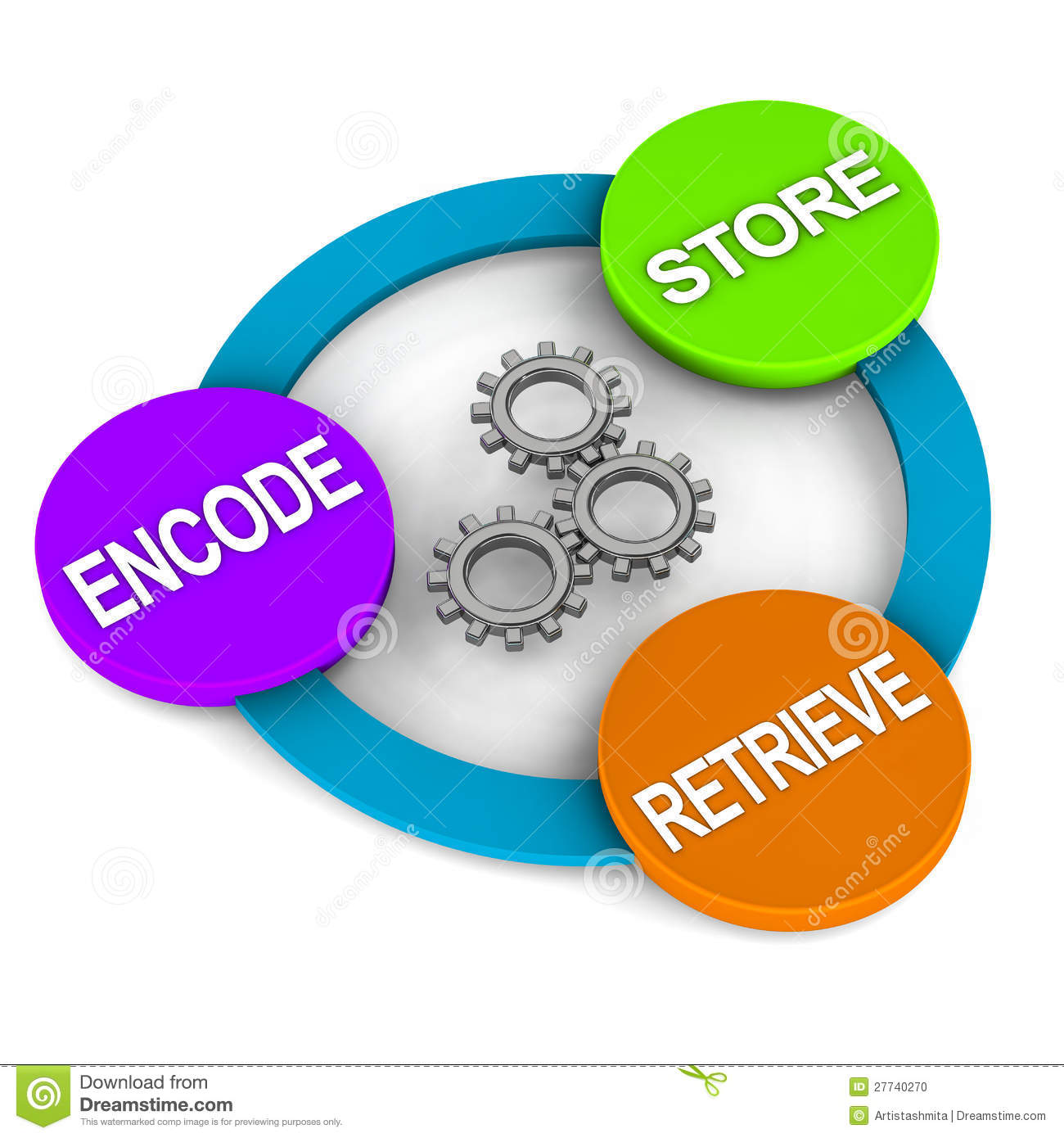 Memory process steps, encode, store and retrieve.