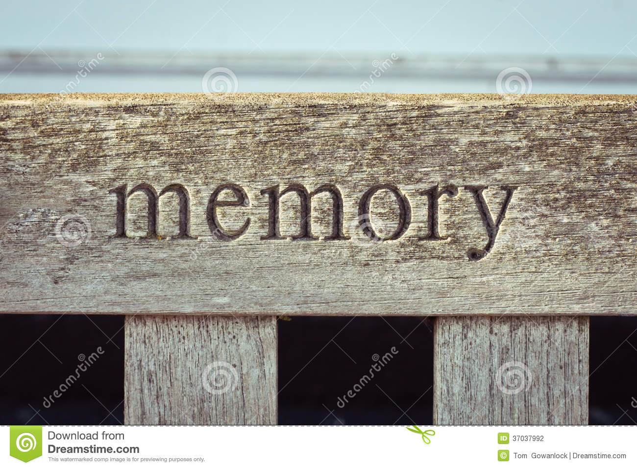 Memory stock photo. Image of background, memory, life ...