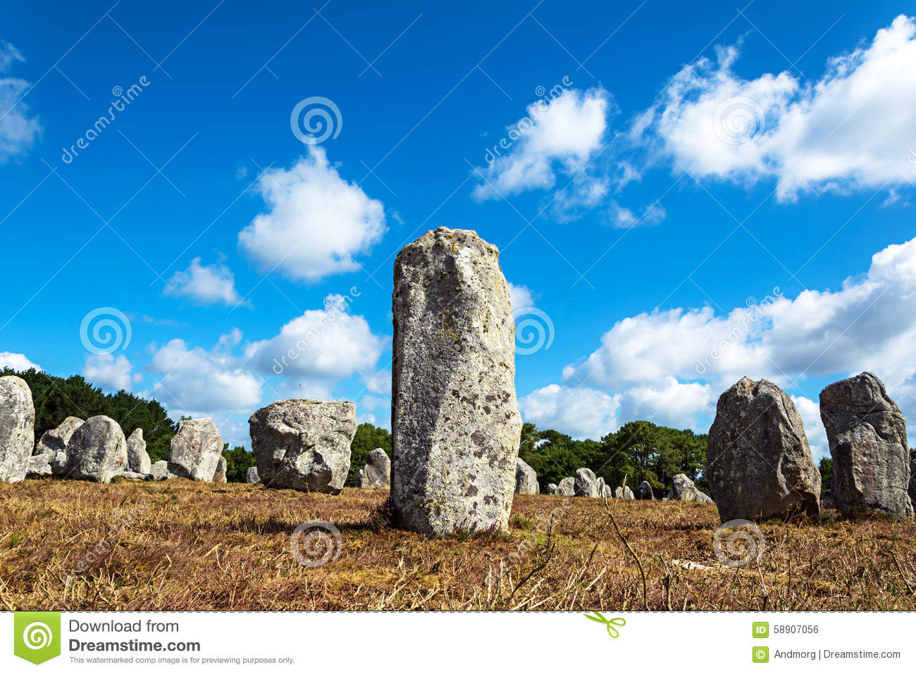 Menhirs alignment. in Carnac, Britain, France