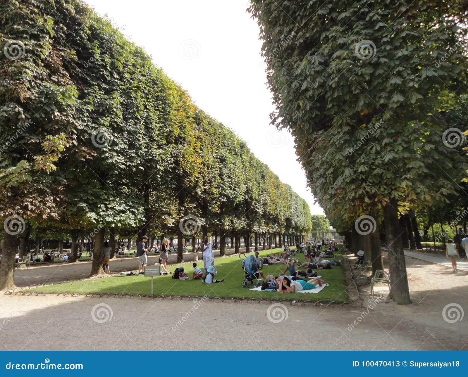 Menigte van mensen met bomen en struik