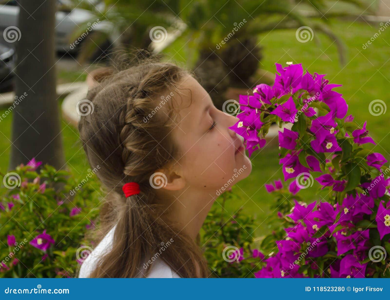 Menina adorável pequena que cheira flores coloridas no dia de verão