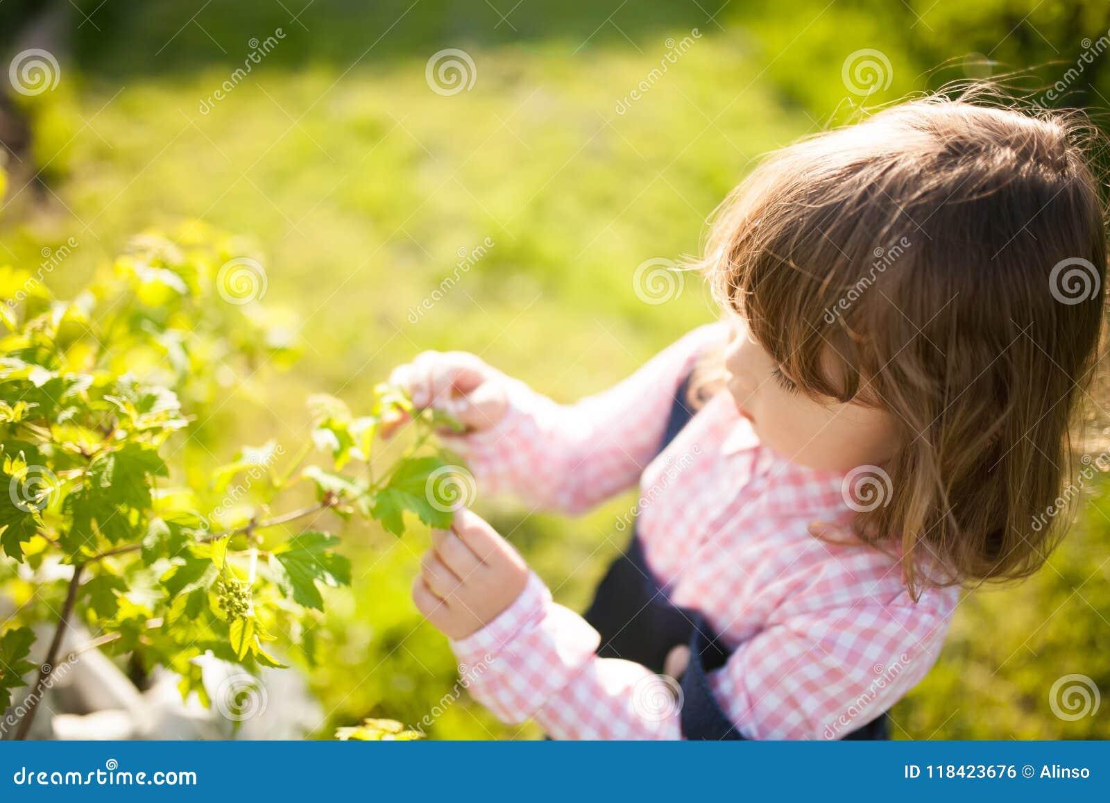 Menina adorável que aprende a natureza no jardim