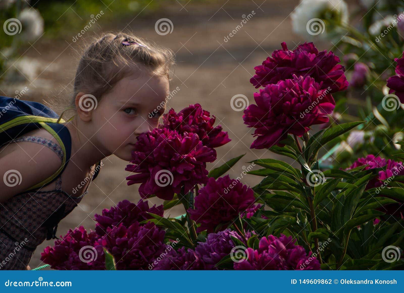 Menina agradável pequena com os olhos bonitos que cheiram flores da peônia no parque