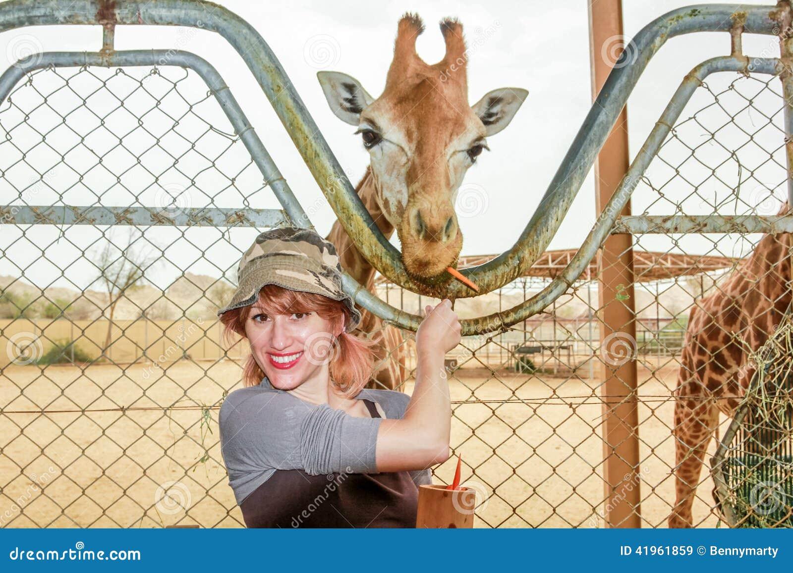 A menina alimenta um girafa