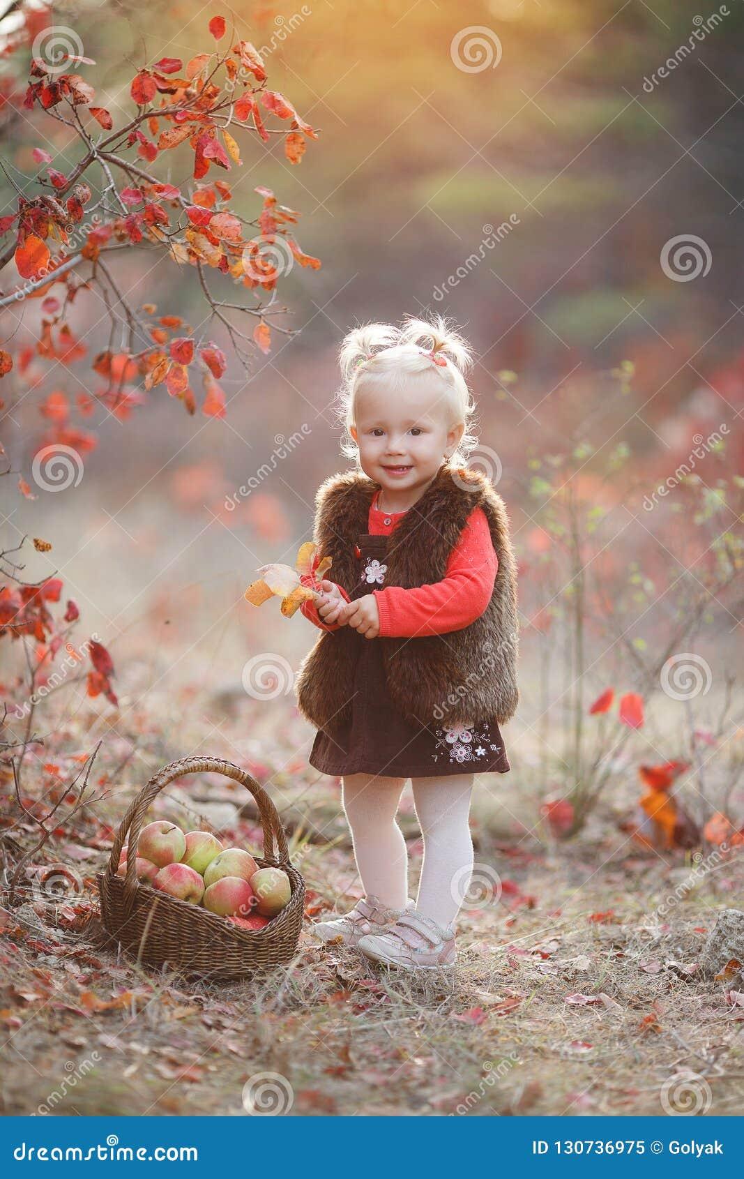 Menina bonito com uma cesta de maçãs vermelhas na queda no parque
