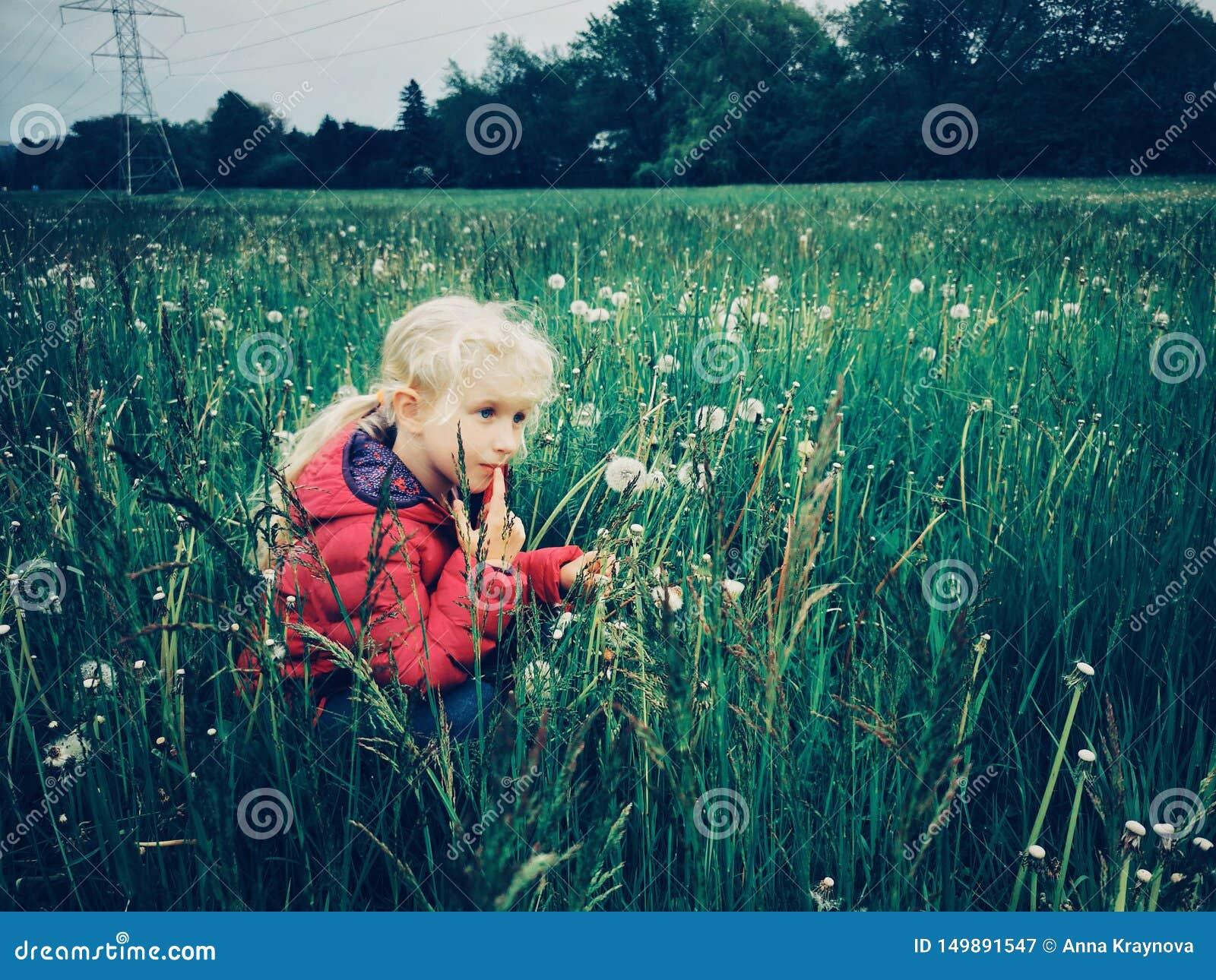 Menina caucasiano que anda entre dentes-de-leão e grama no prado na noite