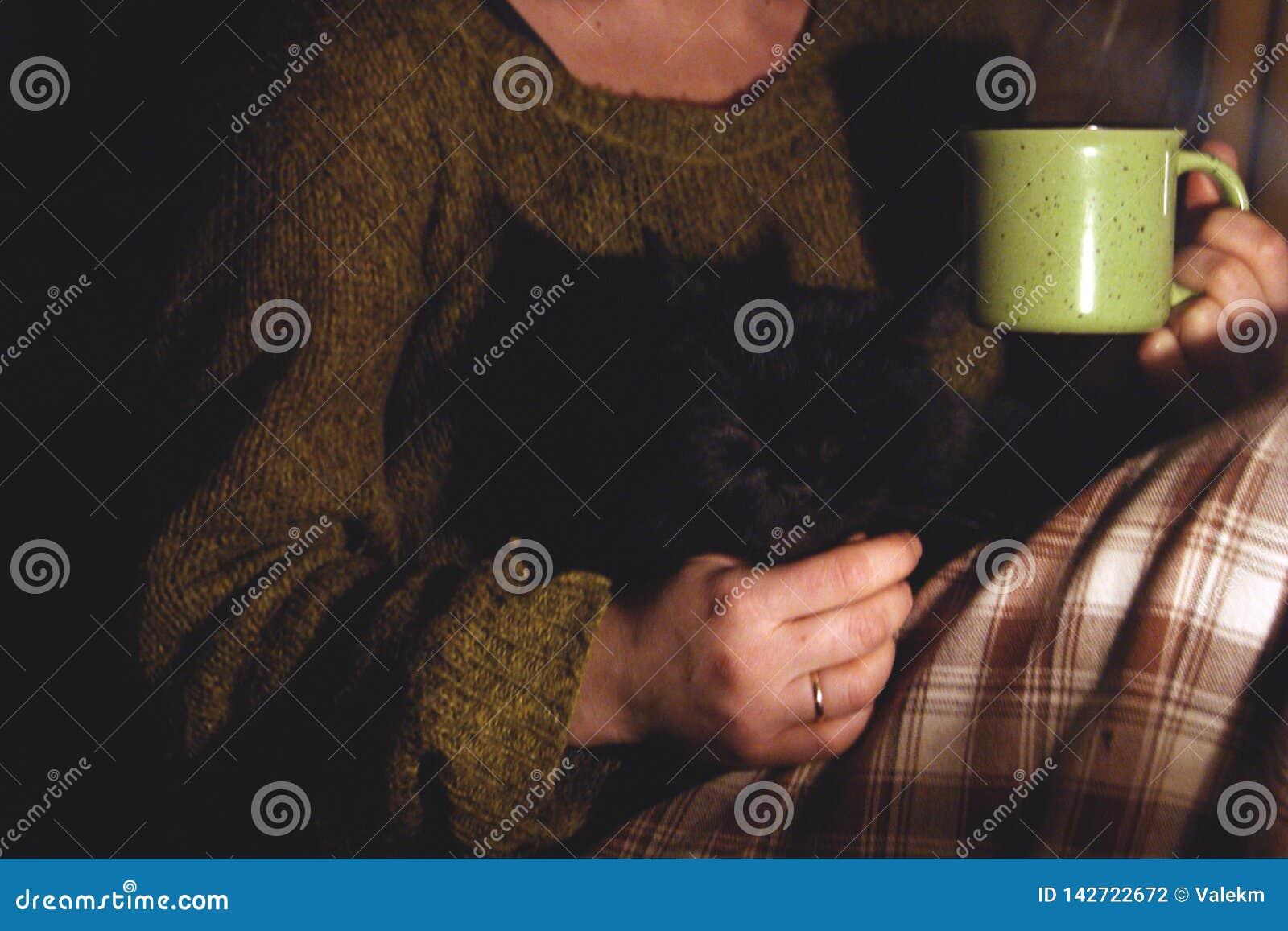 Menina com um copo em suas mãos Nas mãos de um gato preto