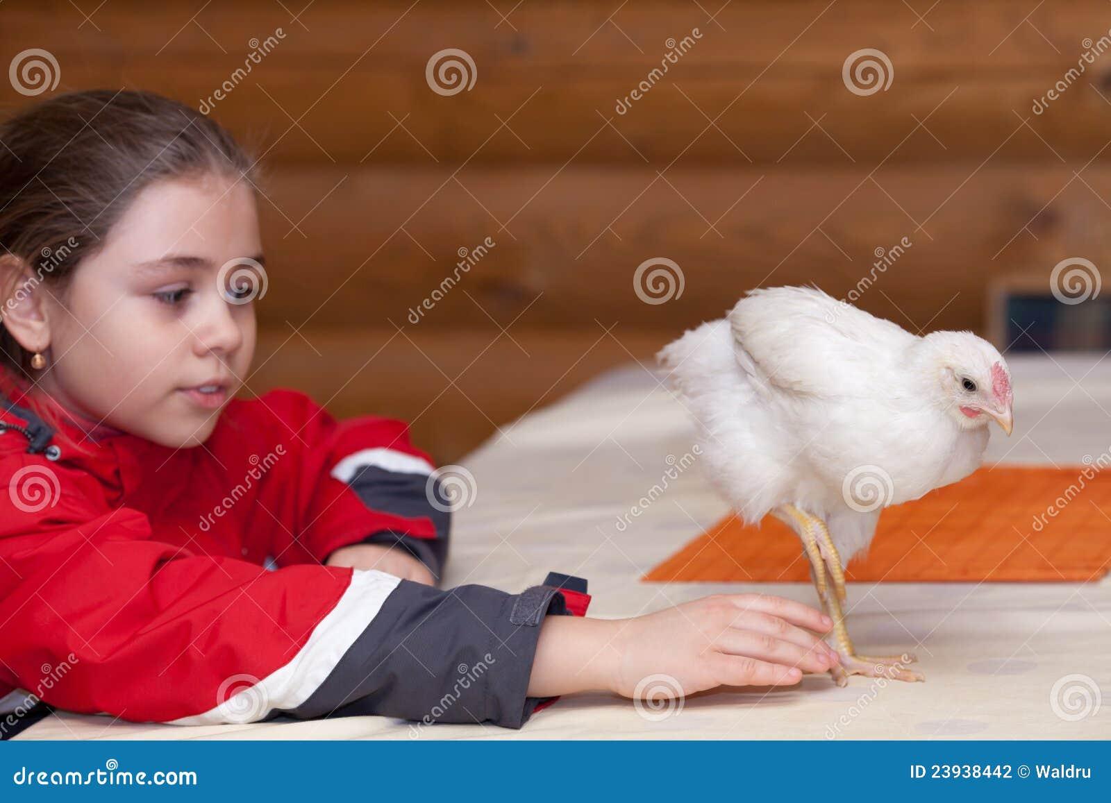 Menina e galinha nova