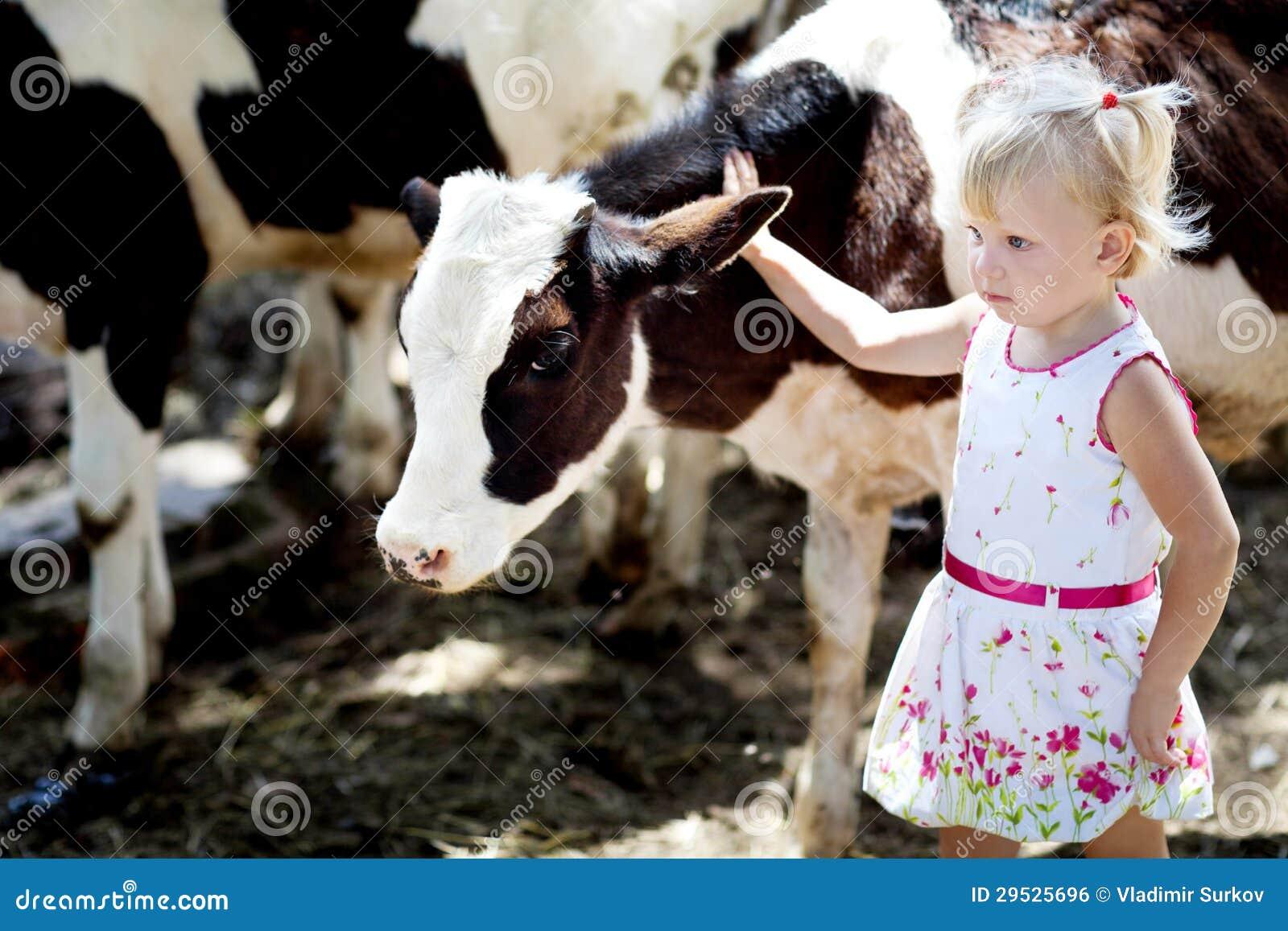 Menina e uma vaca