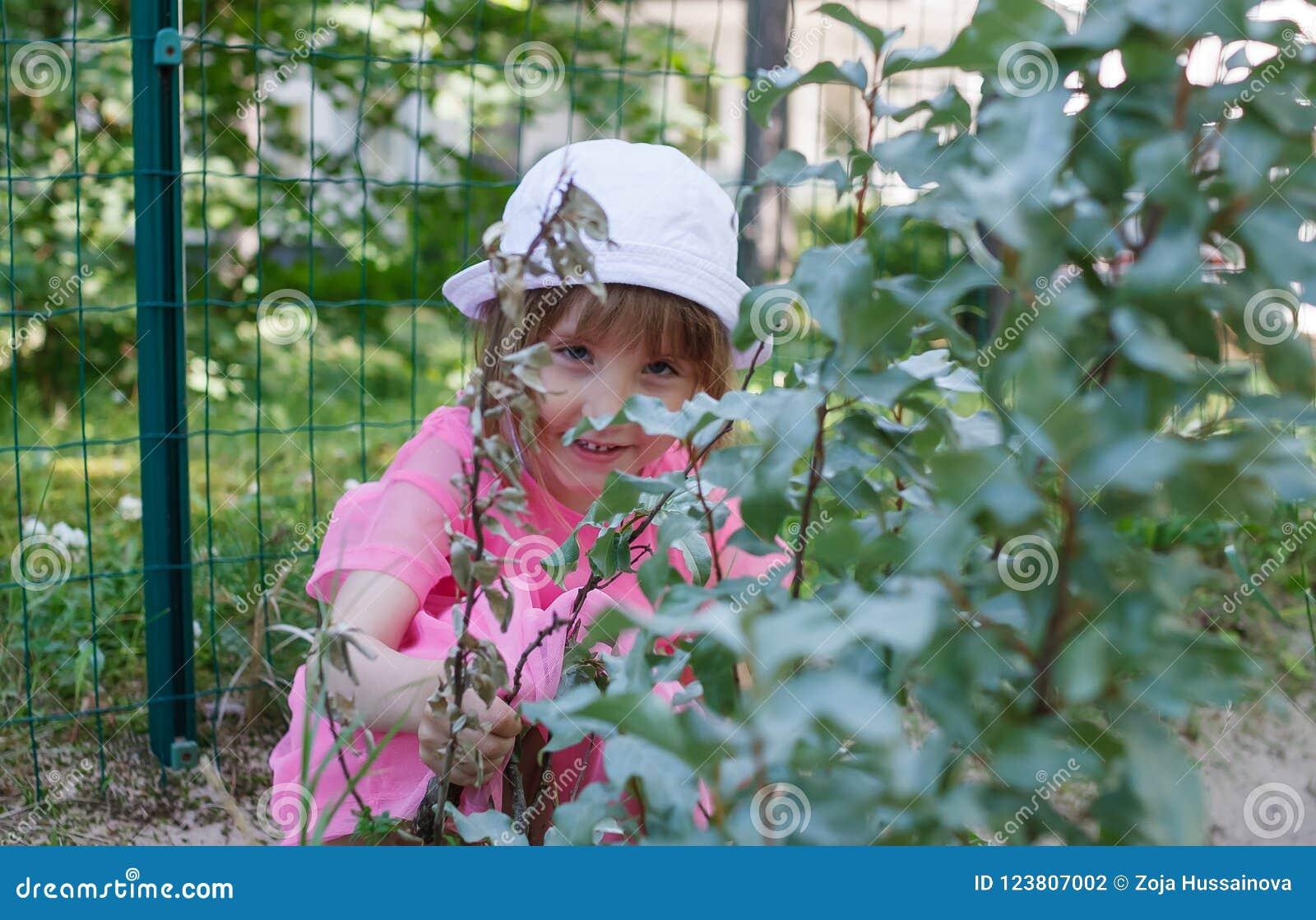 A menina está escondendo atrás dos ramos dos arbustos no verão