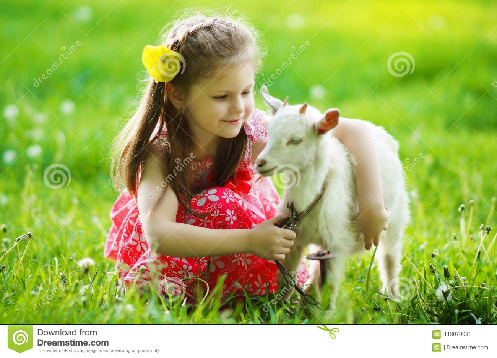 Menina que abraça uma cabra no jardim na grama verde