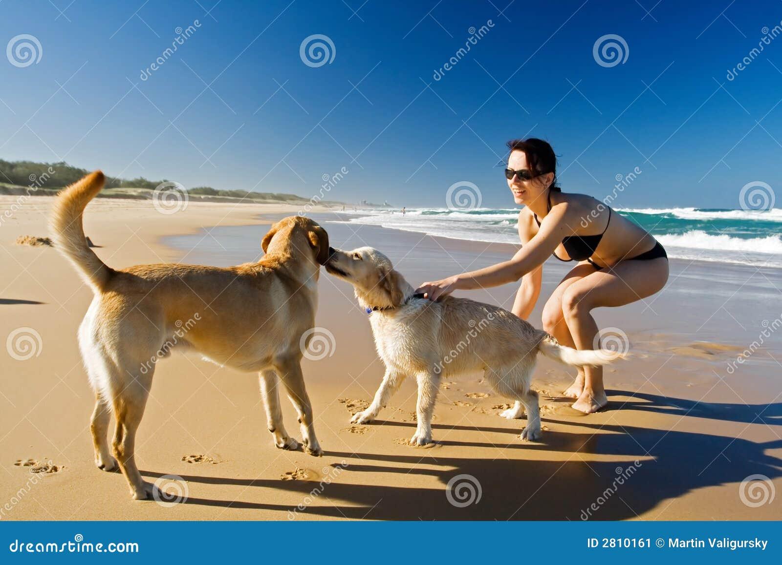 Menina que joga com cães