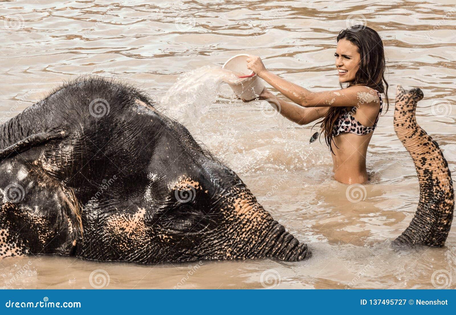 Menina que lava um elefante