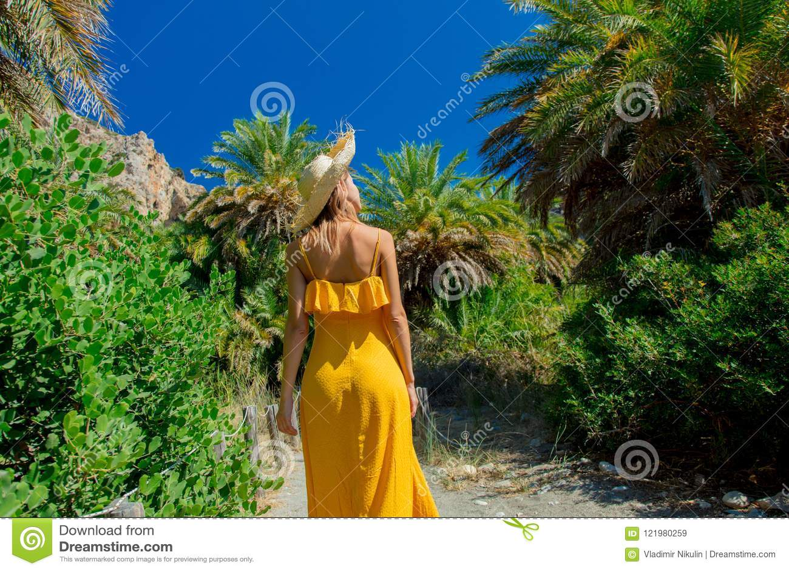 A menina tem o resto na floresta da palma