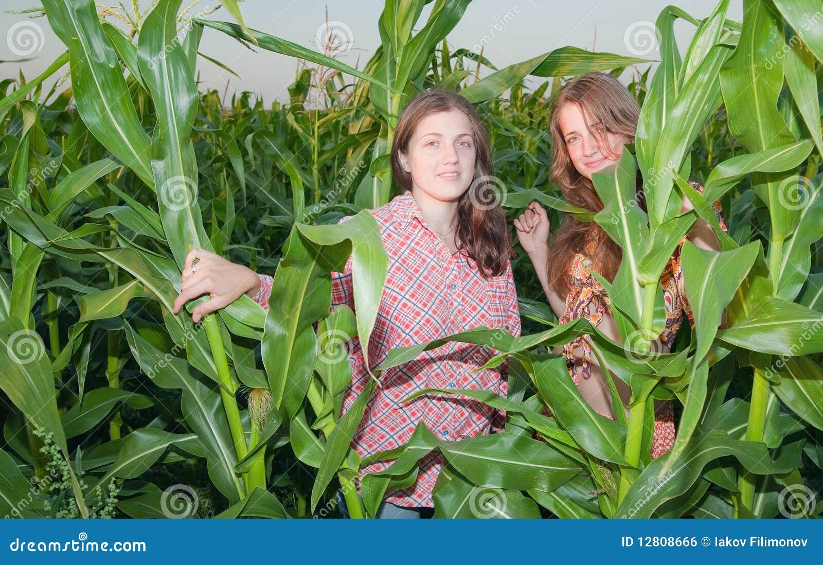 Meninas do país no campo de milho