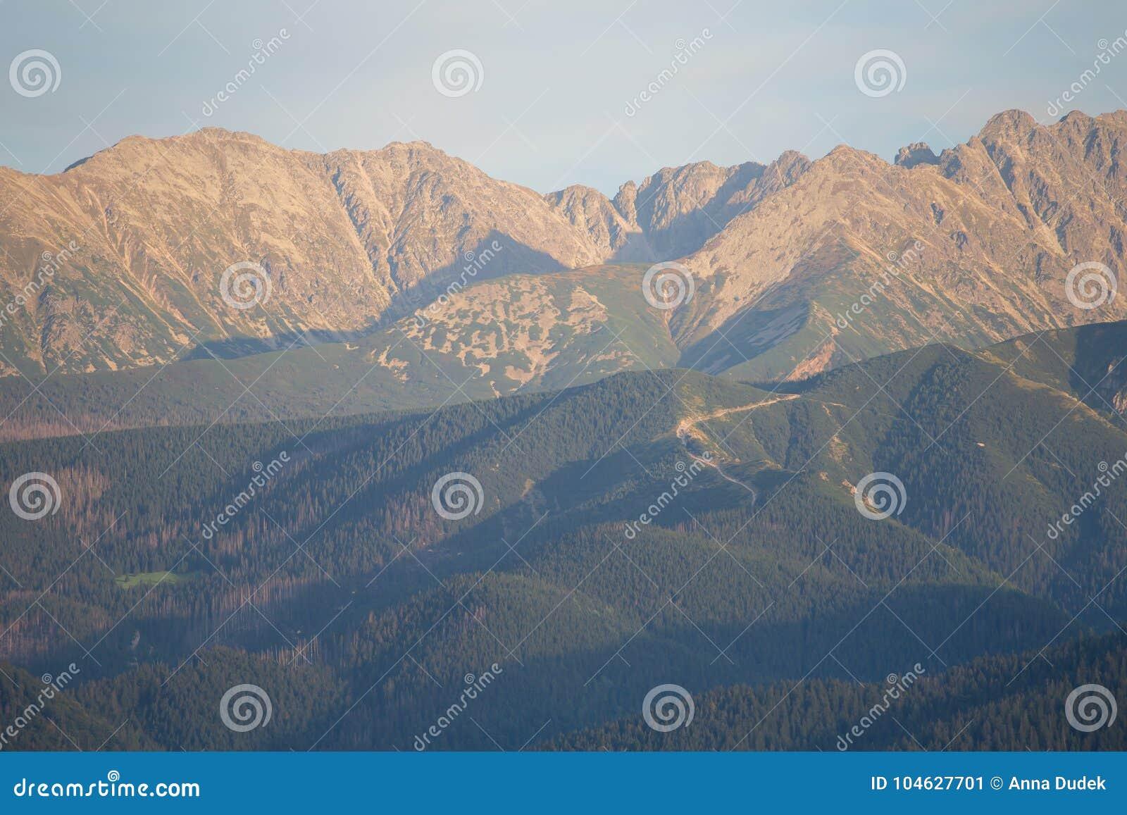 Download Mening Aan Tatra-bergen Van Gubalowka-heuvel Stock Afbeelding - Afbeelding bestaande uit waaier, idyllisch: 104627701