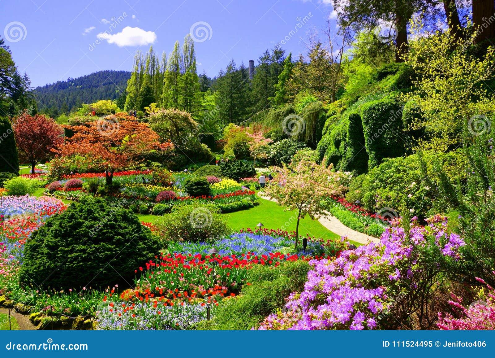 Mening over kleurrijke bloemen van een tuin bij de lente, Victoria, Canada