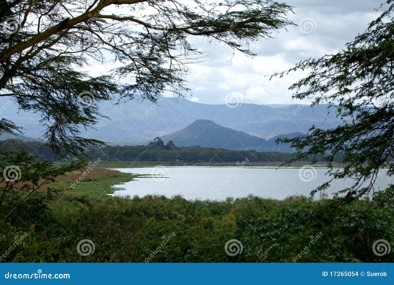 Mening over Meer Naivasha van Elsamere