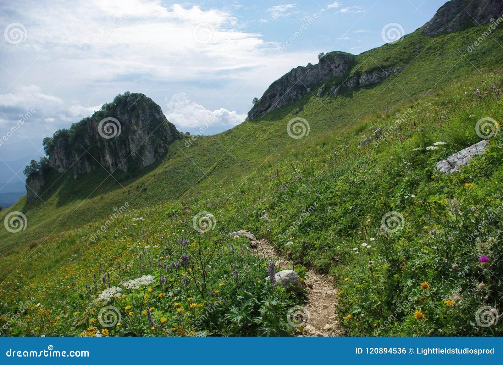 Mening over weg en vallei, Russische Federatie, de Kaukasus,