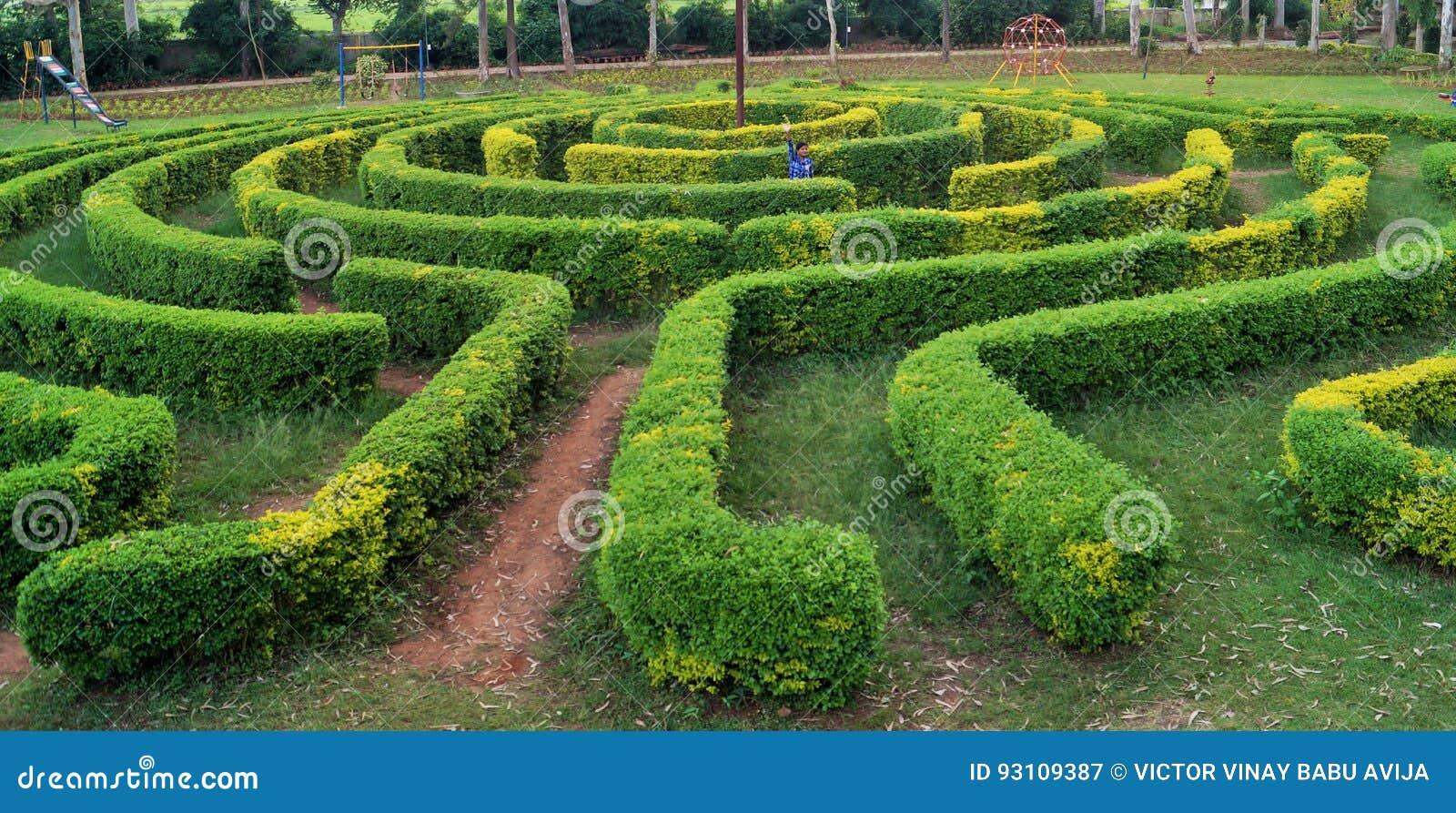 Mening som studsar trädgårds- labyrint