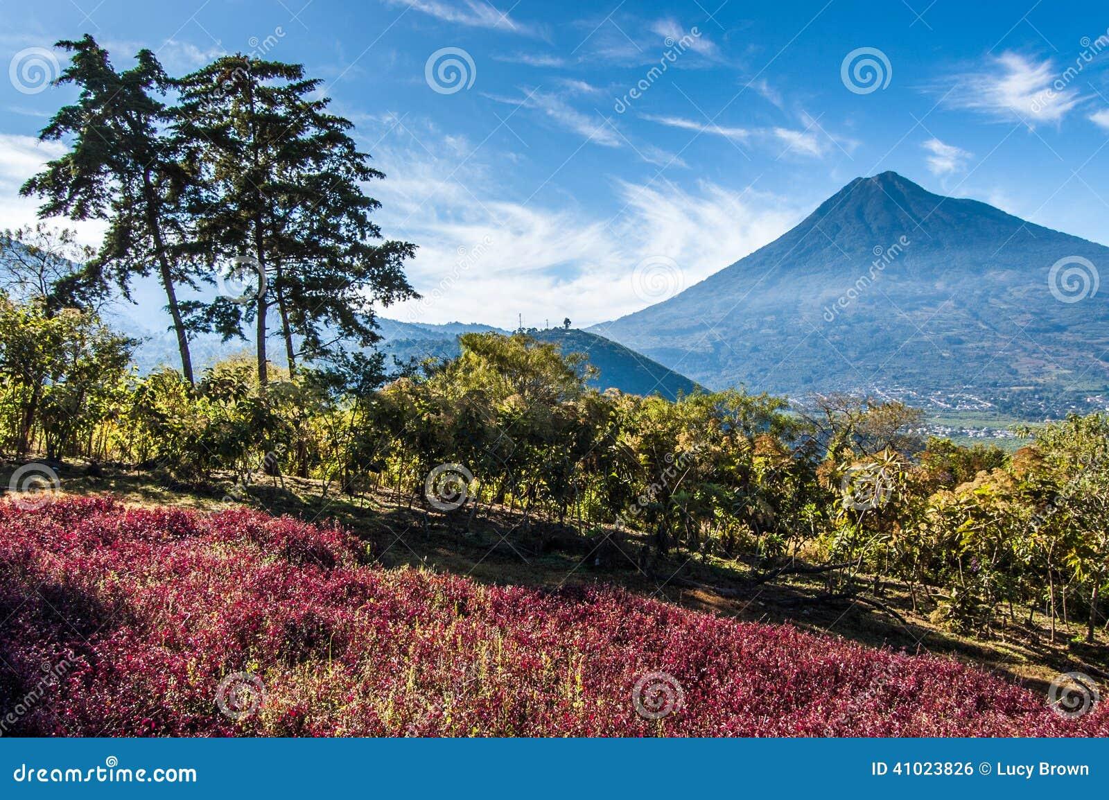Mening van Agua-Vulkaan buiten Antigua, Guatemala