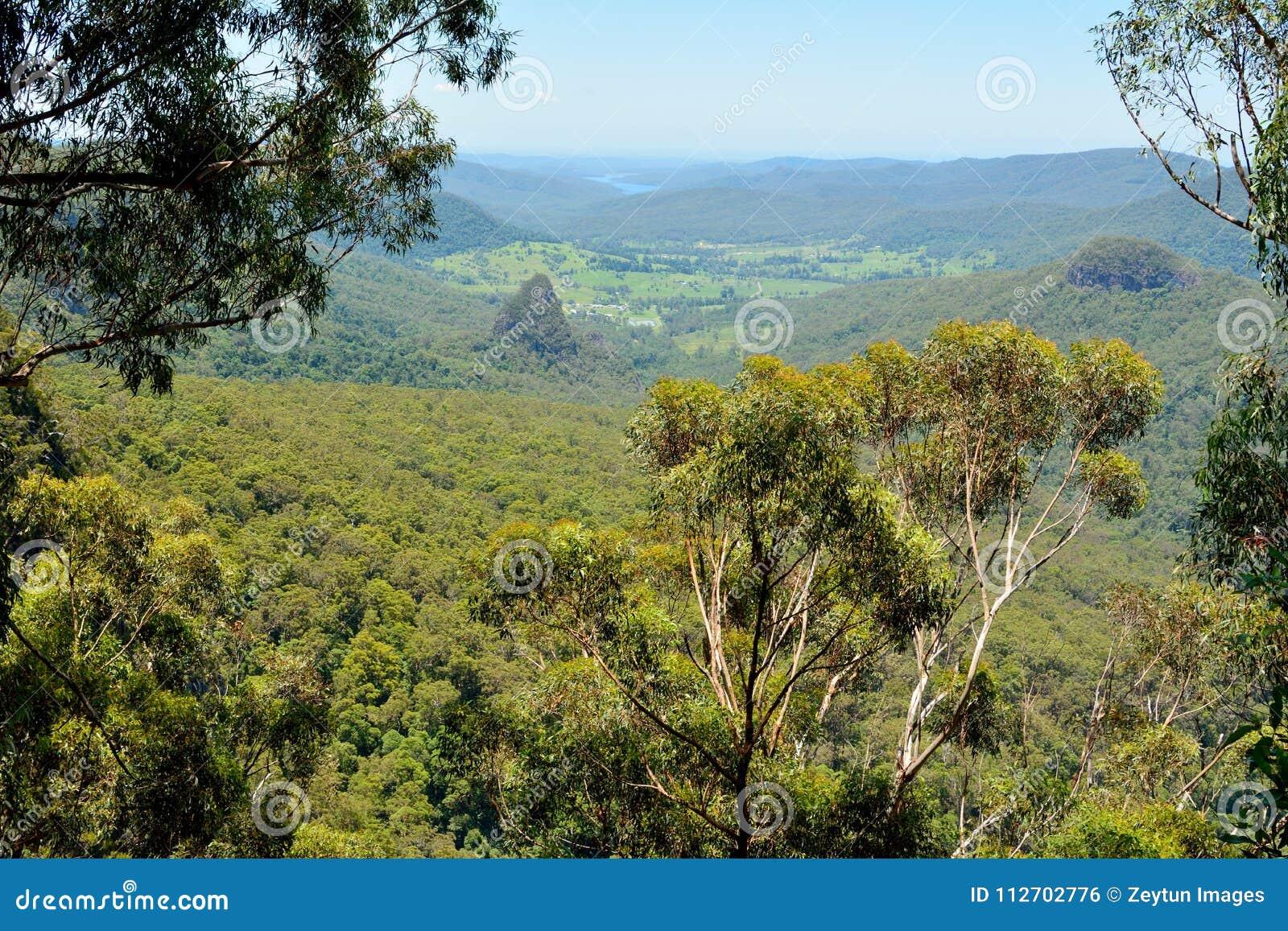 Mening van Bellbird-Vooruitzicht in het Nationale Park van Lamington, Australië