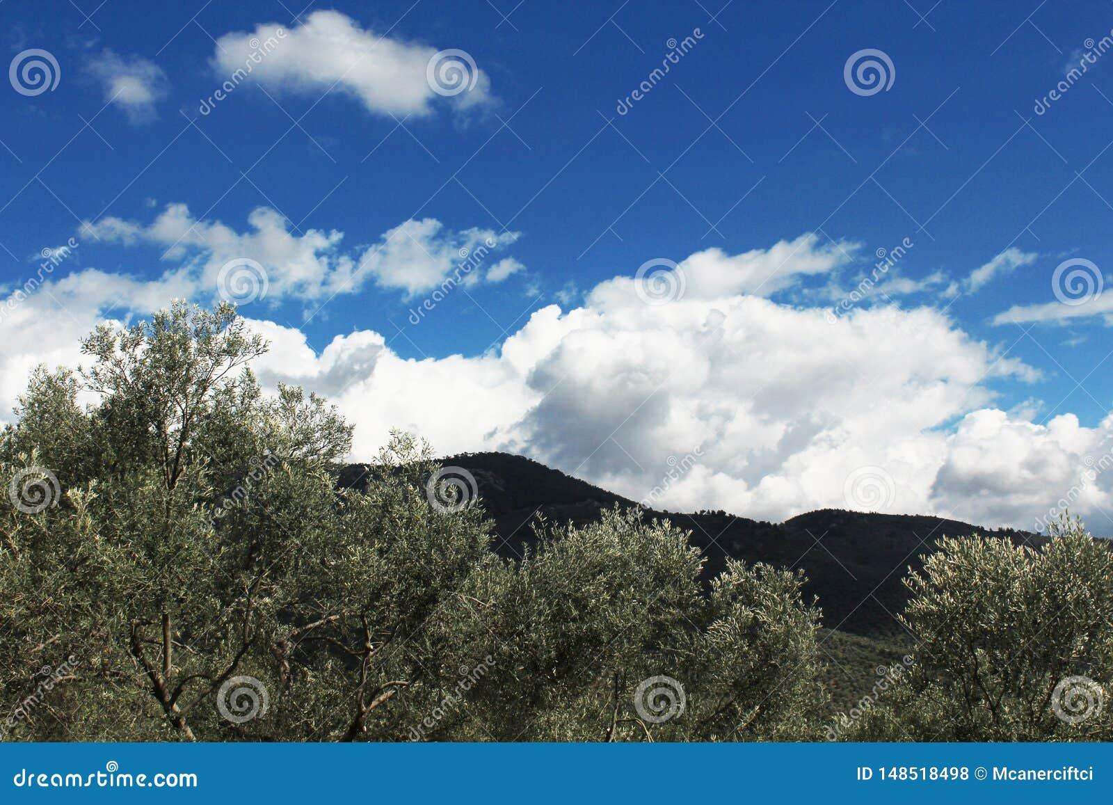 Mening van berg en bewolkte hemel