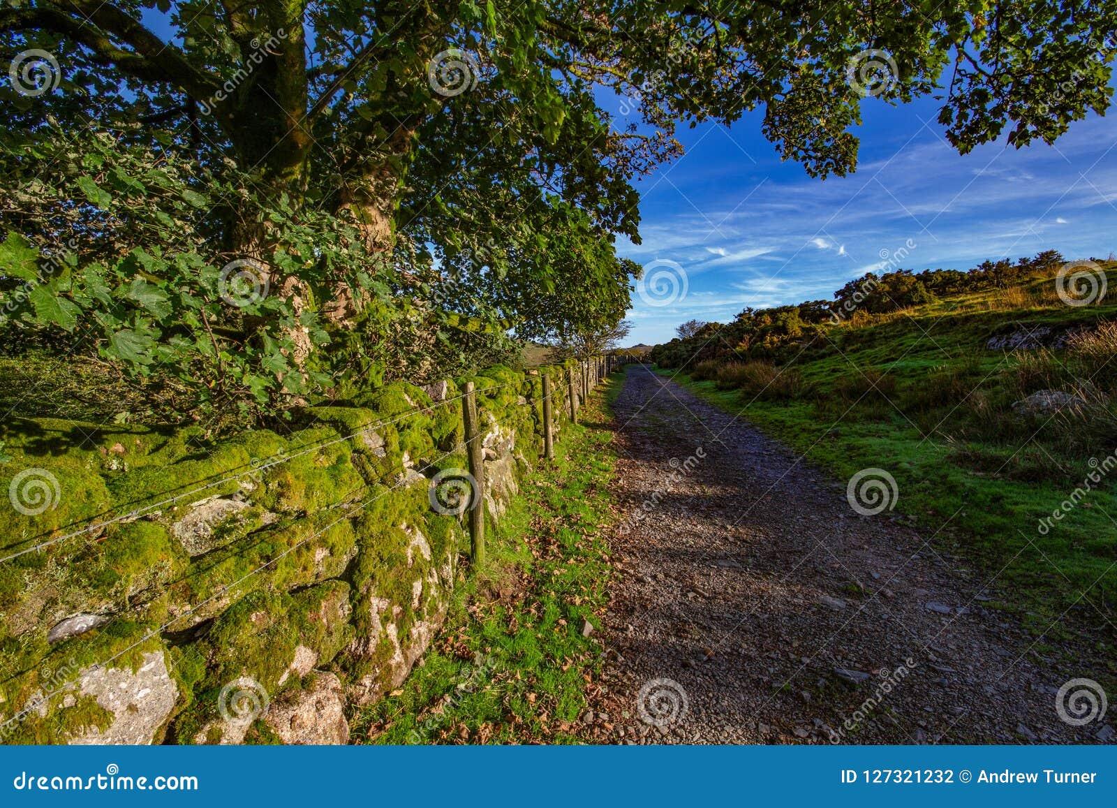 Mening van Dartmoor van de weg aan Wistmans-Hout