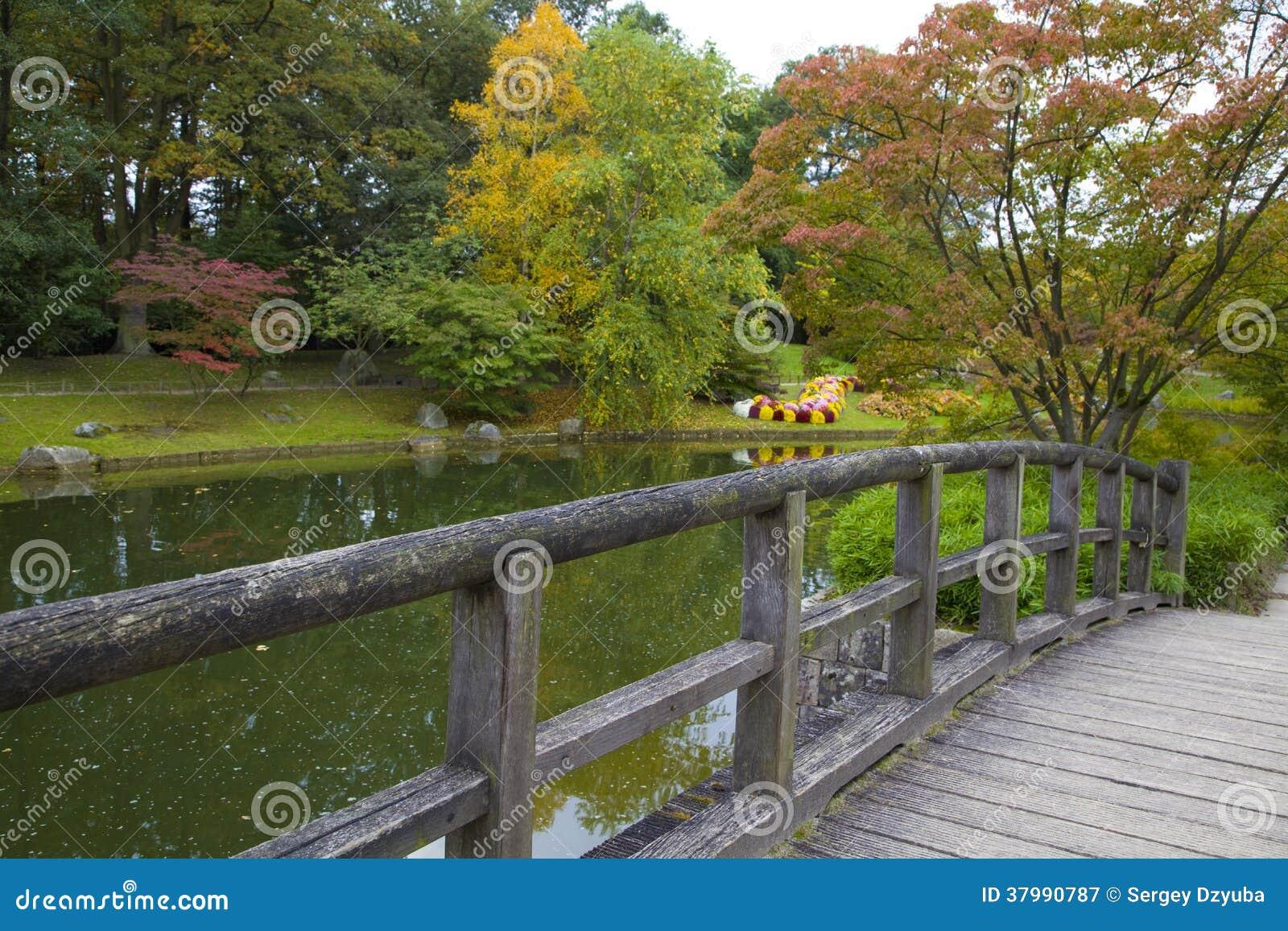 Mening van de brug op vijver in japanse tuin stock afbeelding afbeelding 37990787 - Foto van tuin vijver ...