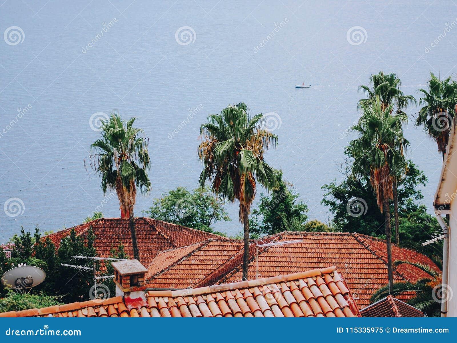 Mening van de daken en het overzees, Herceg Novi, Montenegro