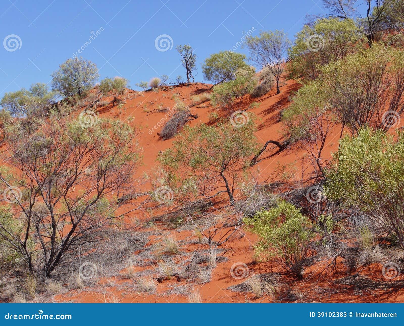 Mening van de rode aarde van het binnenland van Australië