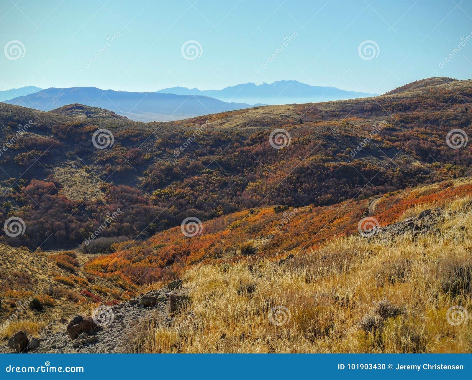 Mening van de van Salt Lake de Vallei en van Wasatch Voorwoestijnbergen in Autumn Fall die Rose Canyon Yellow Fork, Grote Rots en