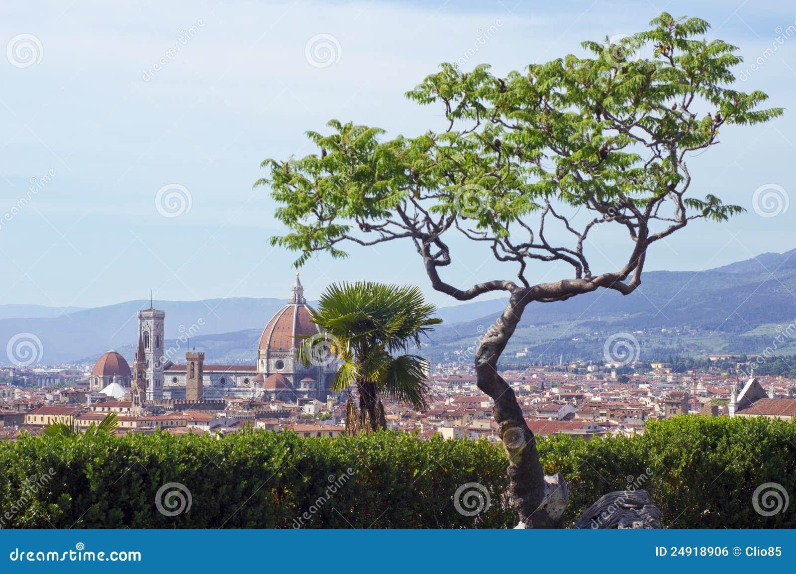 Mening van Duomo (Florence)