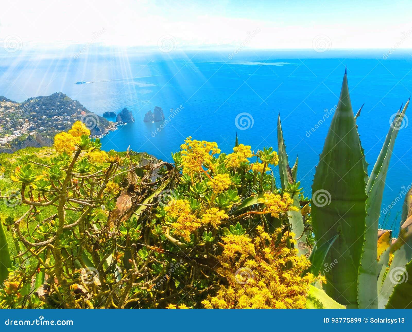 Mening van een klip op het Eiland Capri, Italië, en rotsen in overzees